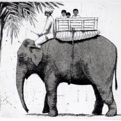 Elephant II, etching, 18x21 cm. £160